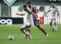 América-MG e Bahia duelam pelo Brasileirão Assaí Créditos: Fernando Moreno/AGIF